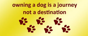 owning a dog is a journey - not a destination