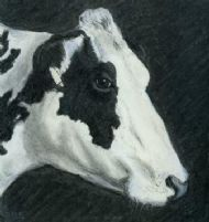 Fairburn Cow