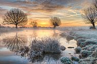 Landscape, Gold Medal<br>Dawn on the River Stour
