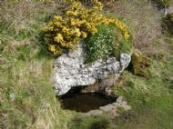 St Columba's Well