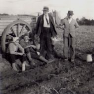 c1955 Potato Picking.