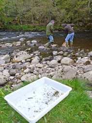 angler's monitoring initiative, alness