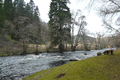 river alness salmon fishing, ardross castle beat