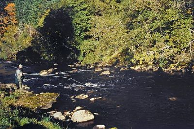 salmon fishing on the novar beat, river alness or river averon