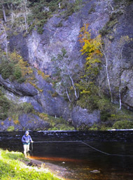 novar fishings, river alness. beat 4, raven's rock