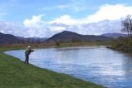 salmonquest salmon fishing holidays, river conon, lower fairburn
