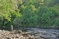 salmonquest salmon fishing holidays, river alness, loanridge beat