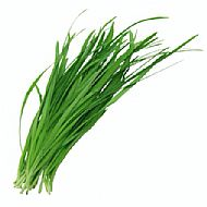 Chives, Garlic (P)