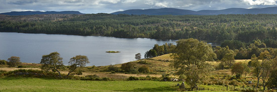 troutquest excursion - wild brown trout fishing on loch migdale, sutherland