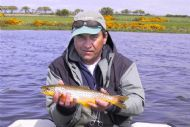 troutquest excursion - wild brown trout from loch watten, caithness.