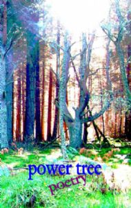 POETRY -  POWER TREE