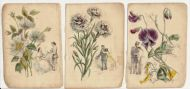 Language of flowers about 1830
