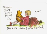 "Winnie the Pooh ""Never forget"""
