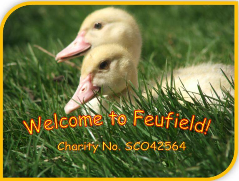 Feufield