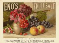 Eno's Fruit Salts