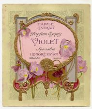 Violet by Honore Payan
