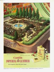 Cusson's Imperial Leather - miniature rose garden