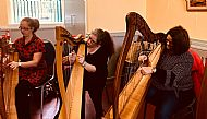 Harp Taster Saturday September 2018