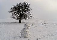 Honey Hill Snowmen