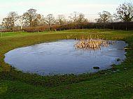 Grange Field Pond