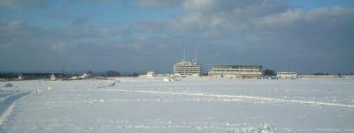 epsom downs february 2009
