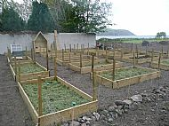 Colin's Raised Bed Empire - update