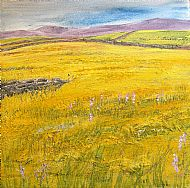Lady's smock meadows