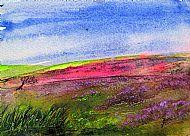 Peak heather moors