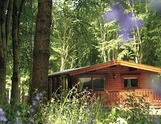 find stunning log cabin holidays in lincolnshire