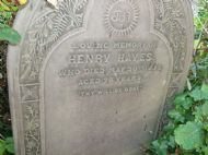 Henry Hayes